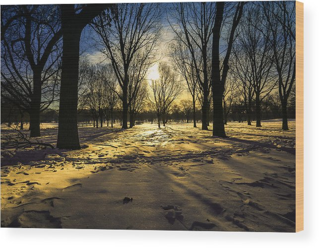 Snow Wood Print featuring the photograph Diamond Dust by Anna-Lee Cappaert