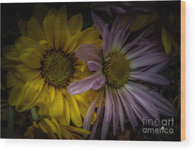 Flowers Wood Print featuring the photograph Discarded Bouquet by Ronald Grogan