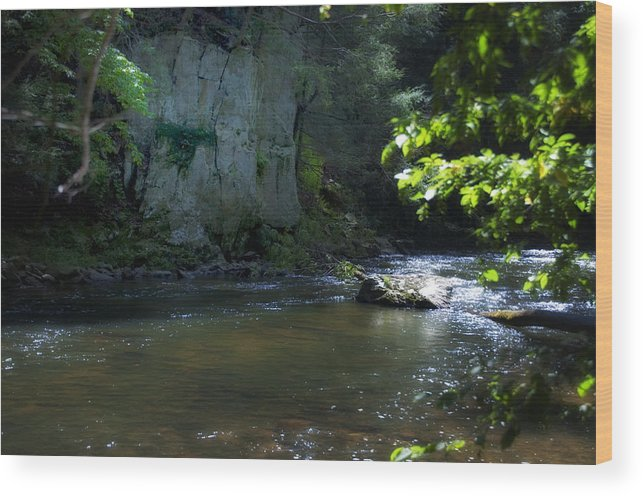 Dowlin Wood Print featuring the photograph Dowlin Forge Park - Brandywine Creek by Bill Cannon