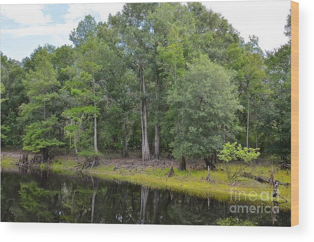 River Wood Print featuring the photograph Down By The Riverside by Carol Bradley