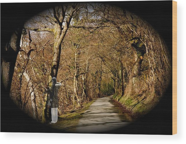 Spirit Wood Print featuring the photograph Down There by Christopher Rowlands