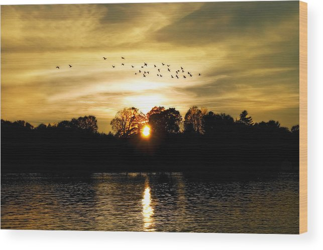 Fall Wood Print featuring the photograph Dream Of A Sunset by Mary Lane