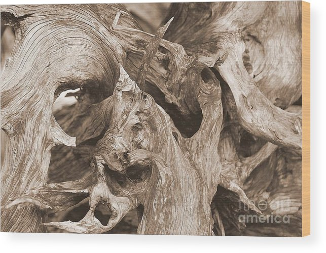 Driftwood Wood Print featuring the photograph Driftwood 1 by April Perez