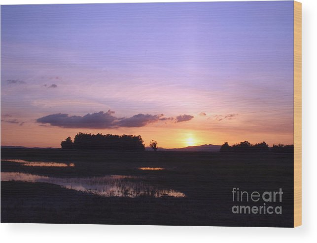 Easter Wood Print featuring the photograph Easter Sky by Juan Romagosa