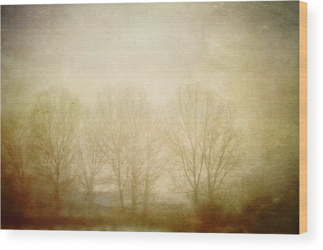 Nature Wood Print featuring the photograph Echoes by Violet Gray