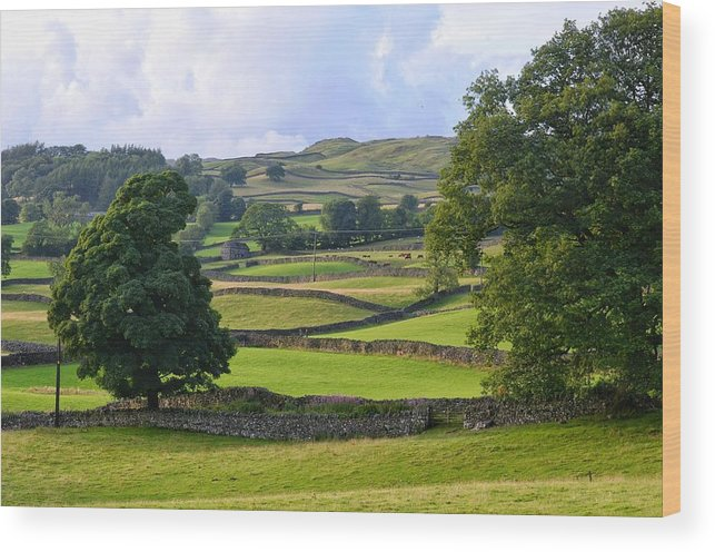 England Wood Print featuring the photograph English Countryside by Michael Biggs