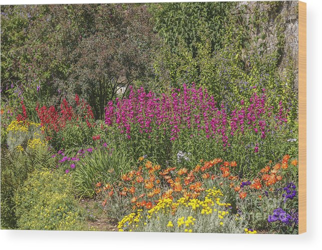 Colors Wood Print featuring the photograph English Garden In Summertime by Patricia Hofmeester