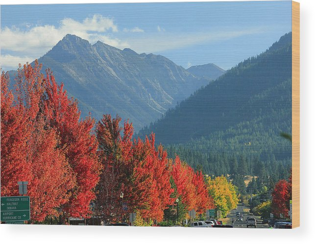 Fall Colors Wood Print featuring the photograph Fall Colors In Joseph Or by Ed Cooper Photography