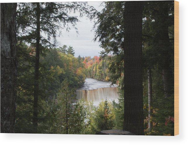 Upper Tahquamenon Falls Wood Print featuring the photograph Falls In The Distance by Linda Kerkau