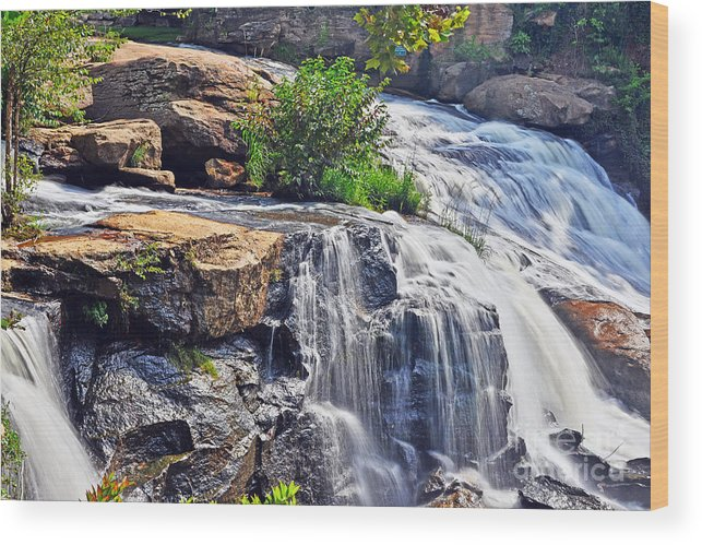 Nature Wood Print featuring the photograph Falls Of Reedy River by Elvis Vaughn
