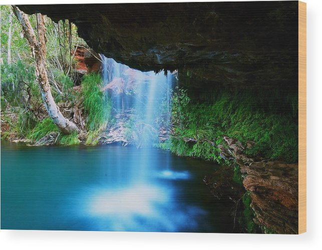 Australia Wood Print featuring the photograph Fern Pool Falls by Aaron Fisher