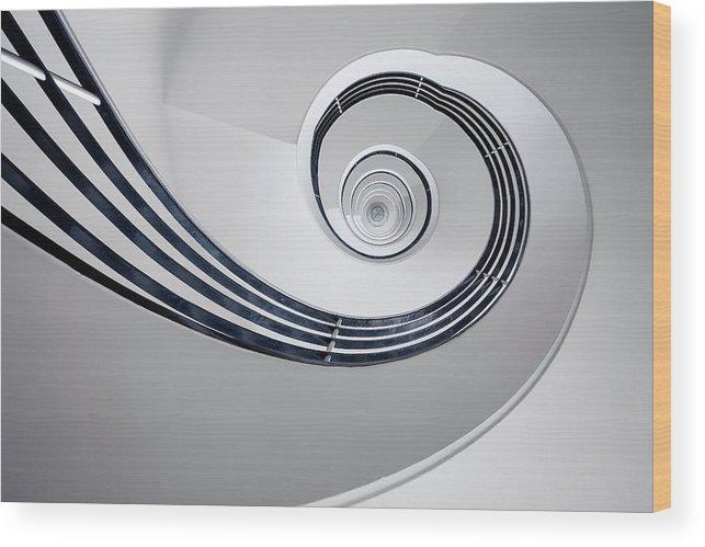 Bw Wood Print featuring the photograph Fibonacci by Max Zimmermann