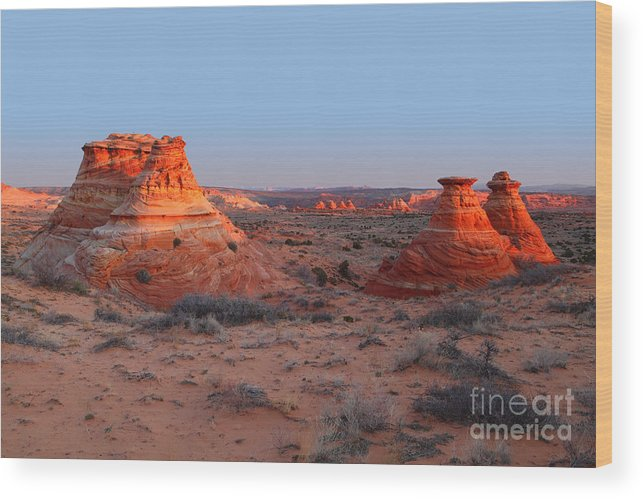 South Coyote Buttes Wood Print featuring the photograph First Light At Teepees by Bill Singleton