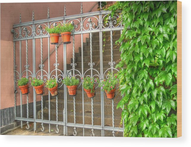 Gate Wood Print featuring the photograph Flower Gates by Linda Covino