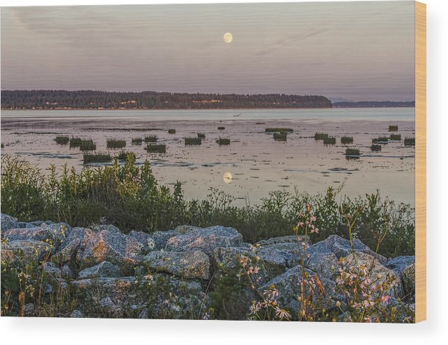 Flowers Wood Print featuring the photograph Flowers And Rocks by Irene Theriau