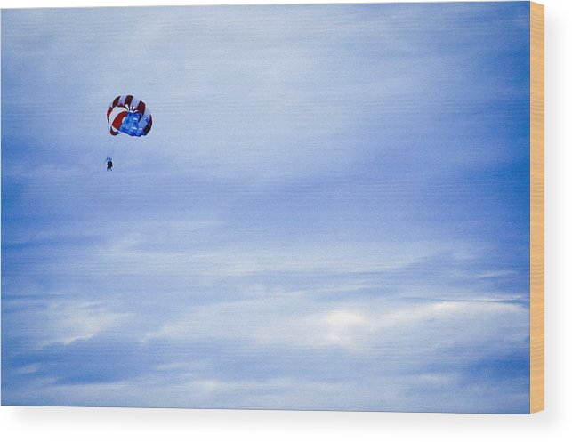 Flying Wood Print featuring the photograph Flying High by Ronda Broatch