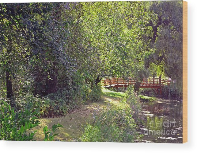 Trees Wood Print featuring the photograph Foot Bridge by Leona Bessey