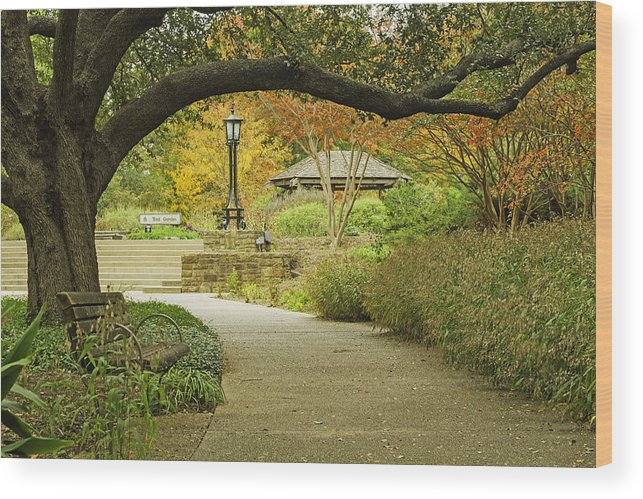 Japanese Gardens Bridge Prints Photographs Wood Print featuring the photograph Fort Worth Japanese Gardens-040 by David Allen Pierson