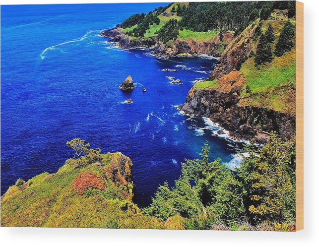 Ocean Wood Print featuring the photograph Foulweather by Benjamin Yeager