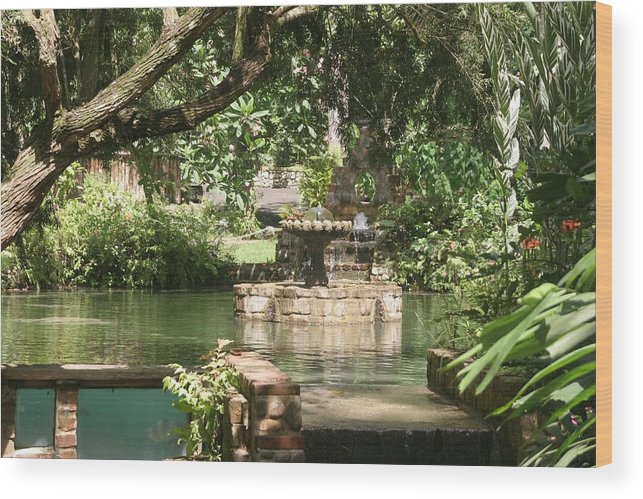 Fountain Wood Print featuring the photograph Fountain Of Youth by Dervent Wiltshire