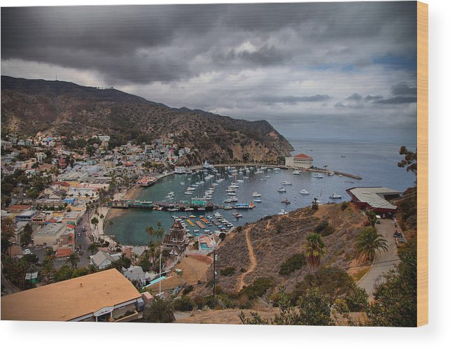 Catalina Wood Print featuring the photograph From Above by Joe Fernandez