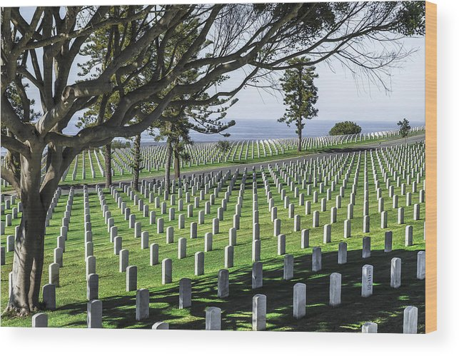 Veteran's Day Wood Print featuring the photograph From Here To Eternity by Ryan Manuel