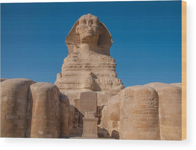 Majestic Wood Print featuring the photograph From The Feet Of The Sphinx by Michael Brewer