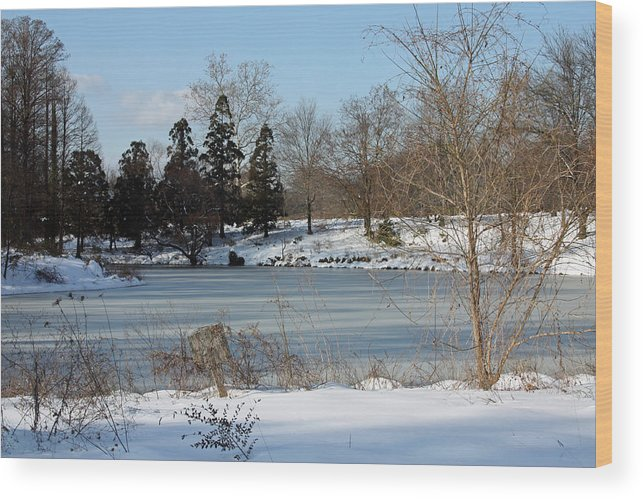 Water Wood Print featuring the photograph Frozen Pond by Carolyn Stagger Cokley