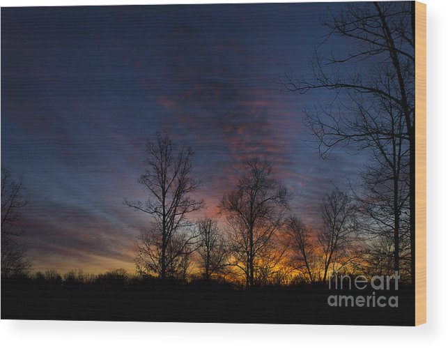 Landscape Wood Print featuring the photograph Full Morning by Debra K Roberts