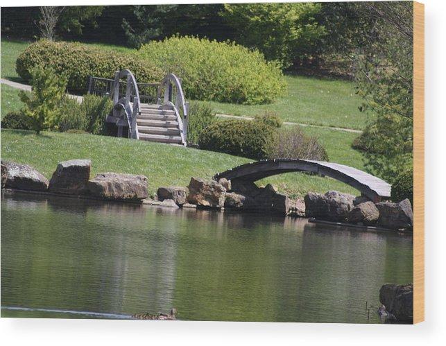 Bridge Wood Print featuring the photograph Garden by Megan Wisniewski