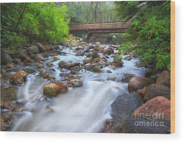 Stream Wood Print featuring the photograph Garden Stream by Charline Xia