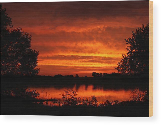 Dawn Wood Print featuring the photograph Glow by Thomas Danilovich
