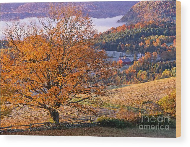Fall Wood Print featuring the photograph Good Morning Vermont by Alan L Graham