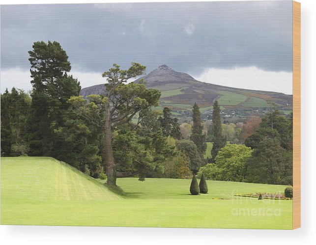 Powerscourt Wood Print featuring the photograph Green Green Garden And Mountain by Christiane Schulze Art And Photography