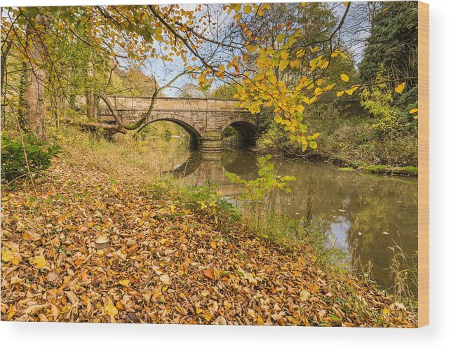 Northumberland Wood Print featuring the photograph Hartford Bridge In Autumn by David Head