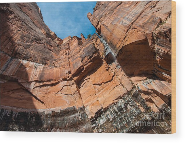 Heaps Canyon Cliff - Zion National Park by Gary Whitton