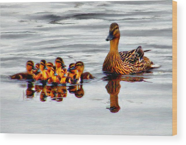 Duck Wood Print featuring the painting Hen And Gaggle by Paddrick Mackin