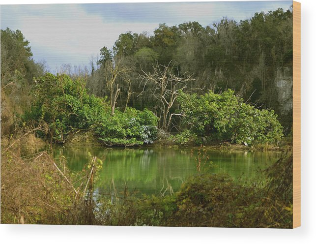 Limestone Wood Print featuring the photograph Hidden Beauty by DigiArt Diaries by Vicky B Fuller