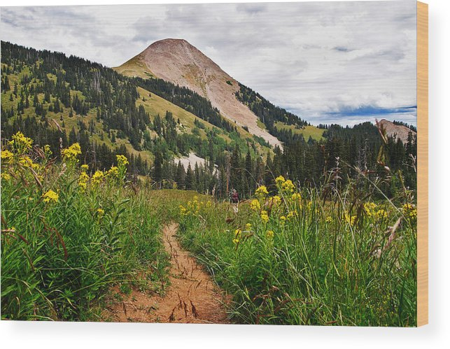 3scape Wood Print featuring the photograph Hiking In La Sal by Adam Romanowicz