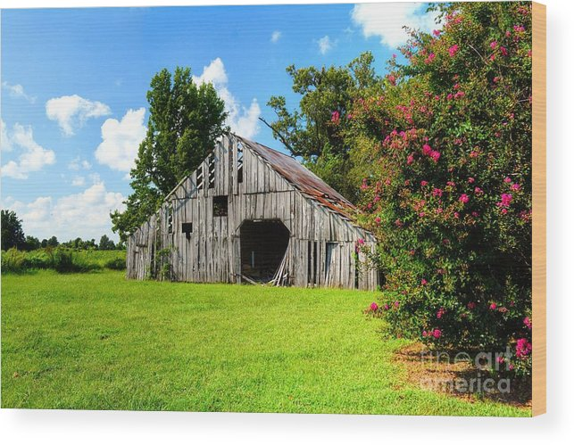 Holly Island Wood Print featuring the photograph Holly Island Barn by Kevin Pugh