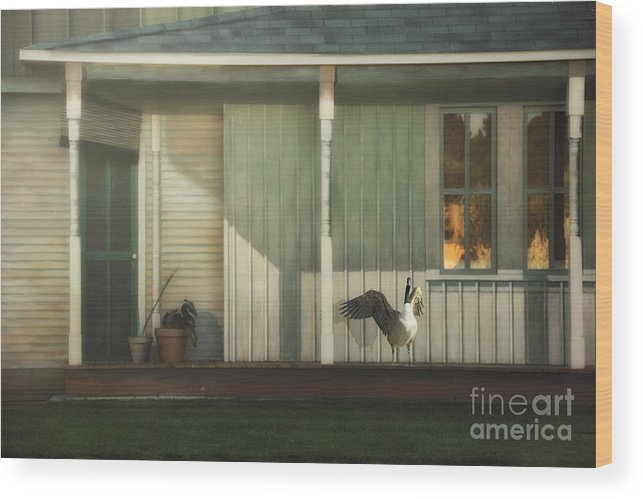 Landscape Wood Print featuring the photograph Home Alarm System by Tom York Images