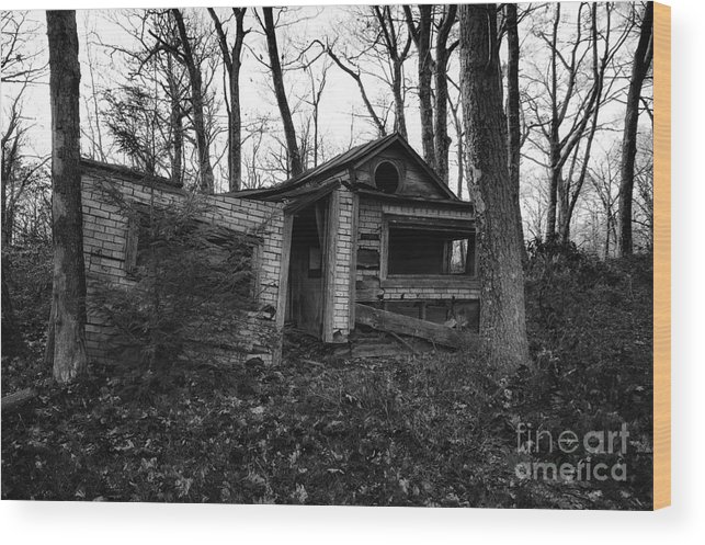 Sam's Point Wood Print featuring the photograph Home Sweet Home by Rick Kuperberg Sr