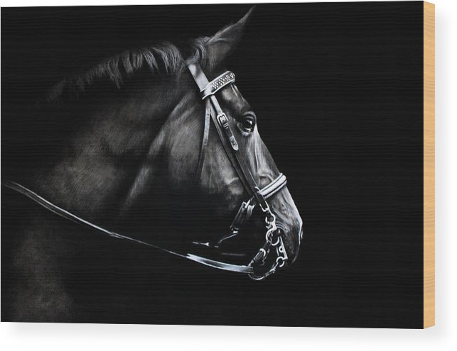 Horse Wood Print featuring the drawing Horse No. 2 by Kimberly VanDenBerg