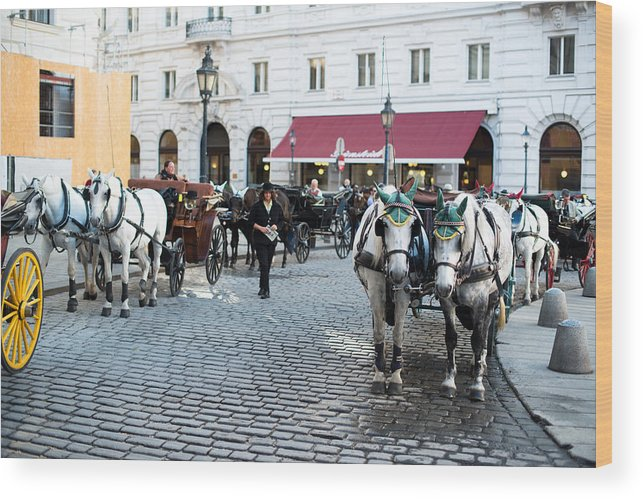 Carriage Wood Print featuring the photograph Horses And Carriage In Vienna by Frank Gaertner