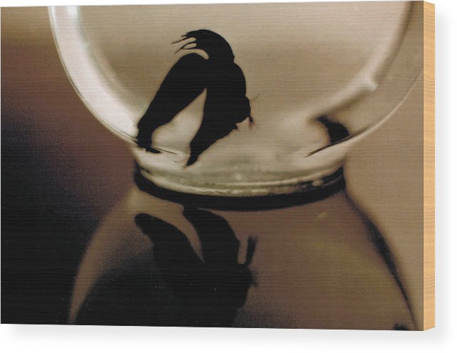 Glass Wood Print featuring the photograph Hour Glass by Steve Karol