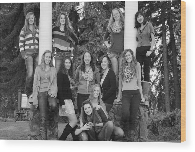 Groups Wood Print featuring the photograph How Many Do You See by Shelby Brower