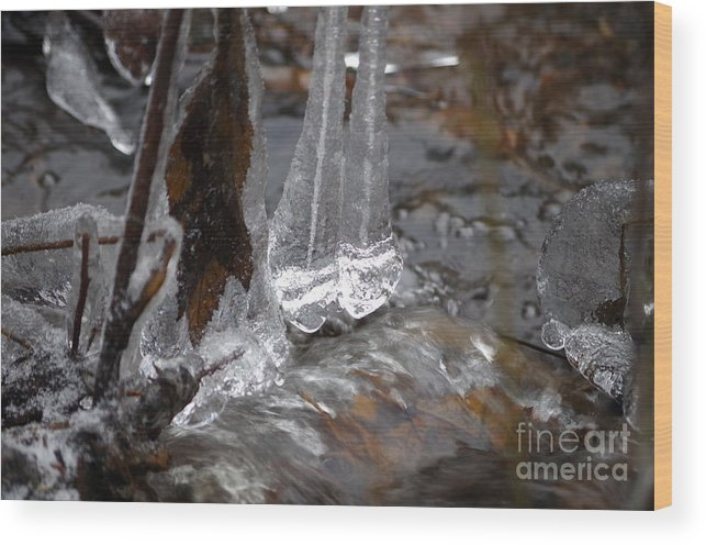 Nature Wood Print featuring the photograph Ice Stream Creations by MJG Products