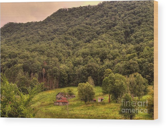 South Wood Print featuring the photograph In The Hills Of Virginia by Robert Pearson