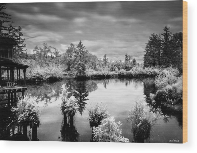 Brownsmead Wood Print featuring the photograph Infrared Fish Dock 2 by Paul Haist