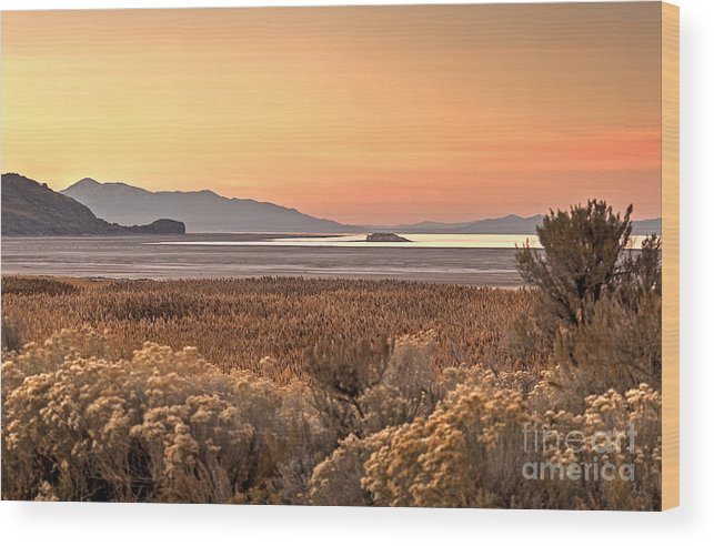 Island Wood Print featuring the photograph Island Daybreak by Earl Nelson